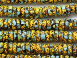 Multi-Color Rondelle Krobo Glass Trade Beads 12-14mm  - Ghana (AT7326)