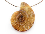 Ammonite Pendant 32mm (AM807)
