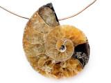 Ammonite Pendant 29mm (AM827)