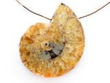 Ammonite Pendant 33mm (AM883)