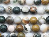 Ocean Jasper Round Gemstone Beads 10mm (GS5283)