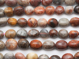 Fossil Coral Agate Nugget Gemstone Beads 8-12mm (GS5306)