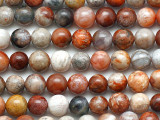Fossil Coral Agate Round Gemstone Beads 6mm (GS5325)