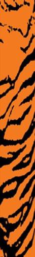 Bohning 7in. Tiger Arrow Wraps (12pk) Orange/Black