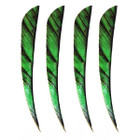"Muddy Buck Gear 4"" Parabolic RW Feathers - 36 Pack (Camo Flo Green)"