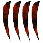 "Muddy Buck Gear 4"" Parabolic RW Feathers - 36 Pack (Camo Orange)"