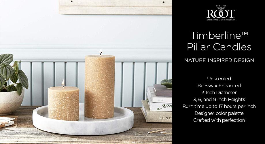 2021-timberline-pillar-web-header.jpg