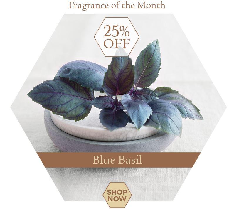 blue-basil-fom-tile.jpg