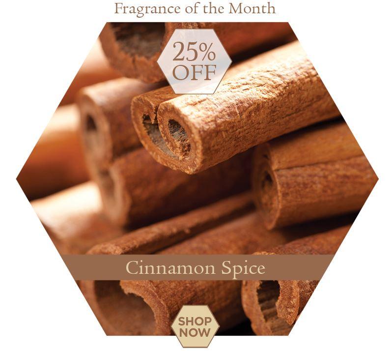 cinnamonspicewebtile.jpg