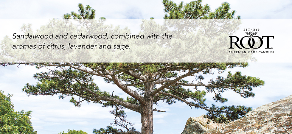 japanese-cedarwood.jpg