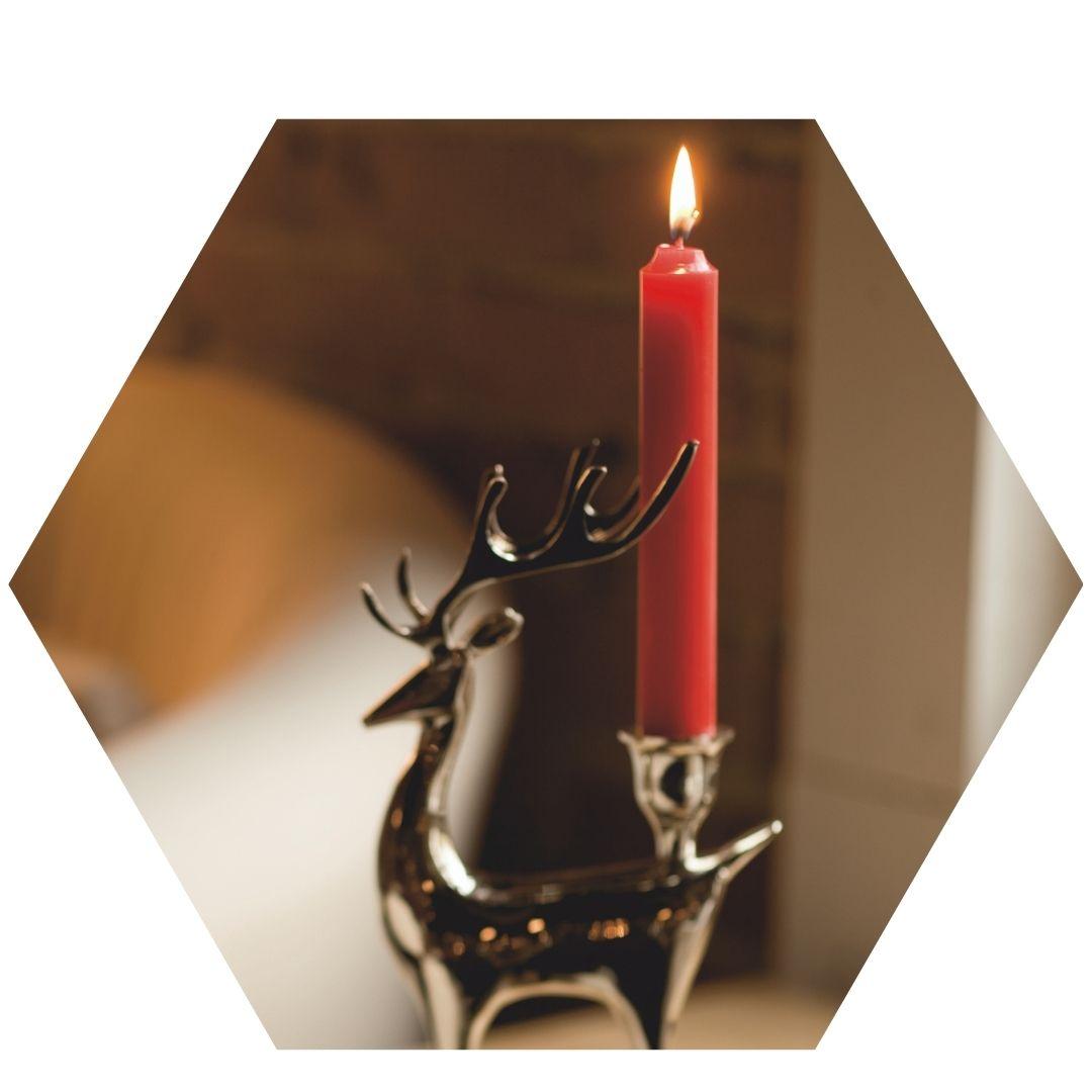 red-arista-reindeer-hex.jpg