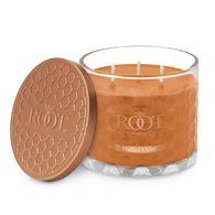 Mulled Cider 3 Wick Honeycomb Candle