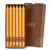 "12"" Timberline™ Arista™ Butterscotch Box of 12 Candles"