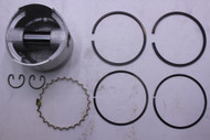 47 874 02-S } PISTON W/RING SET
