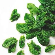 Frozen Spinach Leaf