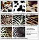 Animal Prints plush