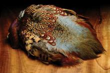 Ringneck Pheasant Skins- Natural
