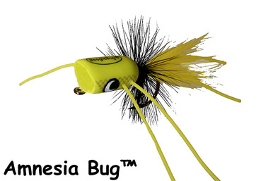 BoogleBug Amnesia Bug