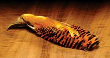 Hareline Golden Pheasant Complete Head