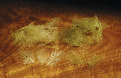 CDC Feathers