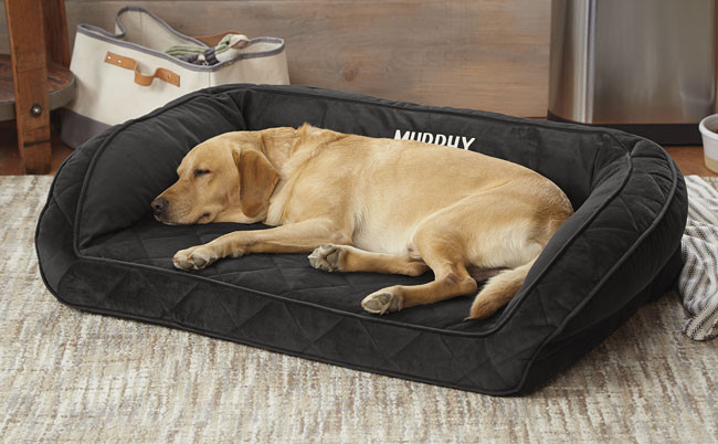 Orvis Deep Dish Dog Bed with Memory Foam