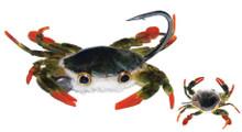 MFC Crabby Patty Crab- Olive