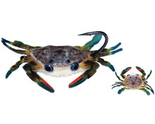 MFC Crab/Crawdad Stalk Eyes- Blue/Black
