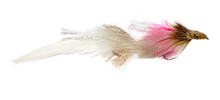 Lynch's Drunk and Disorderly Deceiver (White/Pink)