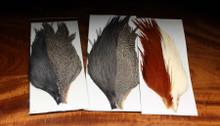 Hareline Tyers Starter Rooster Cape Set - 4 Color