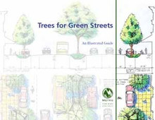 Trees for green streets: An illustrated guide (non-resident/bulk)