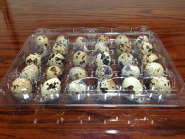large-quail-egg-container-thirty-count