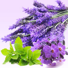 Lavender Mint.