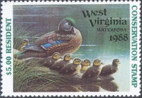 West Virginia Duck Stamp 1988 Wood Ducks Resident