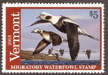 Vermont Duck Stamp 2001 Old Squaw