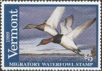 Vermont Duck Stamp 1999 Canvasback
