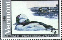 Vermont Duck Stamp 1995 Bufflehead