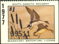 South Dakota Duck Stamp 1977 Pintails