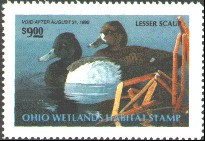 Ohio Duck Stamp 1991 Lesser Scaup