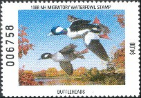 New Hampshire Duck Stamp 1988 Buffleheads