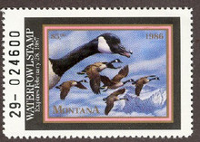Montana Duck Stamp 1986 Canada Geese