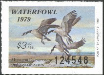 Missouri Duck Stamp 1979 Canada Geese