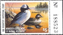 Minnesota Duck Stamp 1988 Buffleheads