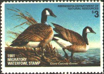 Minnesota Duck Stamp 1981 Canada Geese