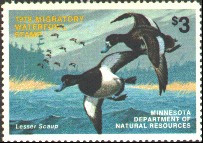 Minnesota Duck Stamp 1978 Lesser Scaup
