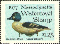 Massachusetts Duck Stamp 1977 Common Goldeneye Stamp portrays decoy