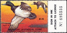 Maryland Duck Stamp 1977 Greater Scaup