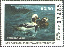 Maine Duck Stamp 1992 Old Squaw