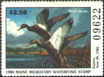 Maine Duck Stamp 1984 Black Ducks