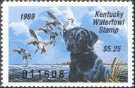 Kentucky Duck Stamp 1989 Black Lab / Canvasbacks