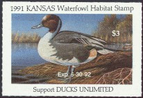 Kansas Duck Stamp 1991 Pintail